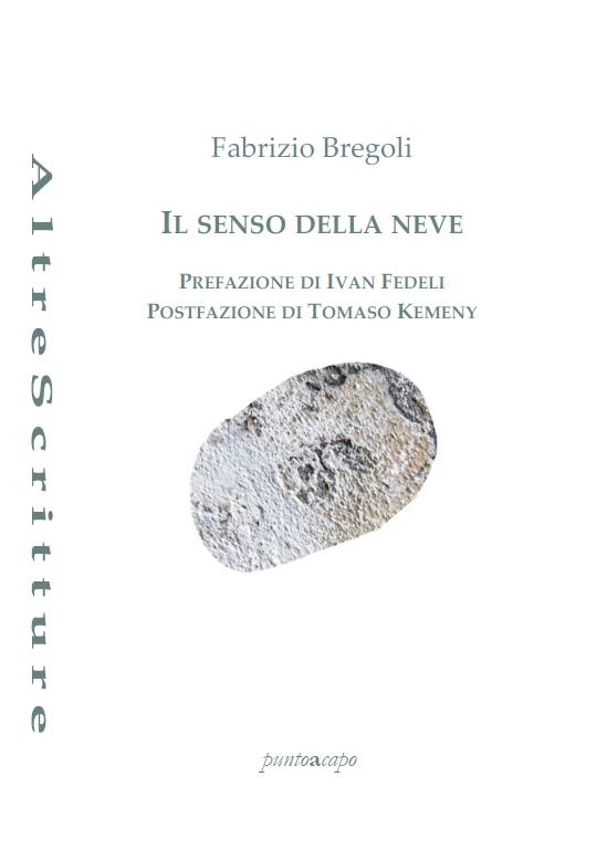 Il senso della neve – Fabrizio Bregoli