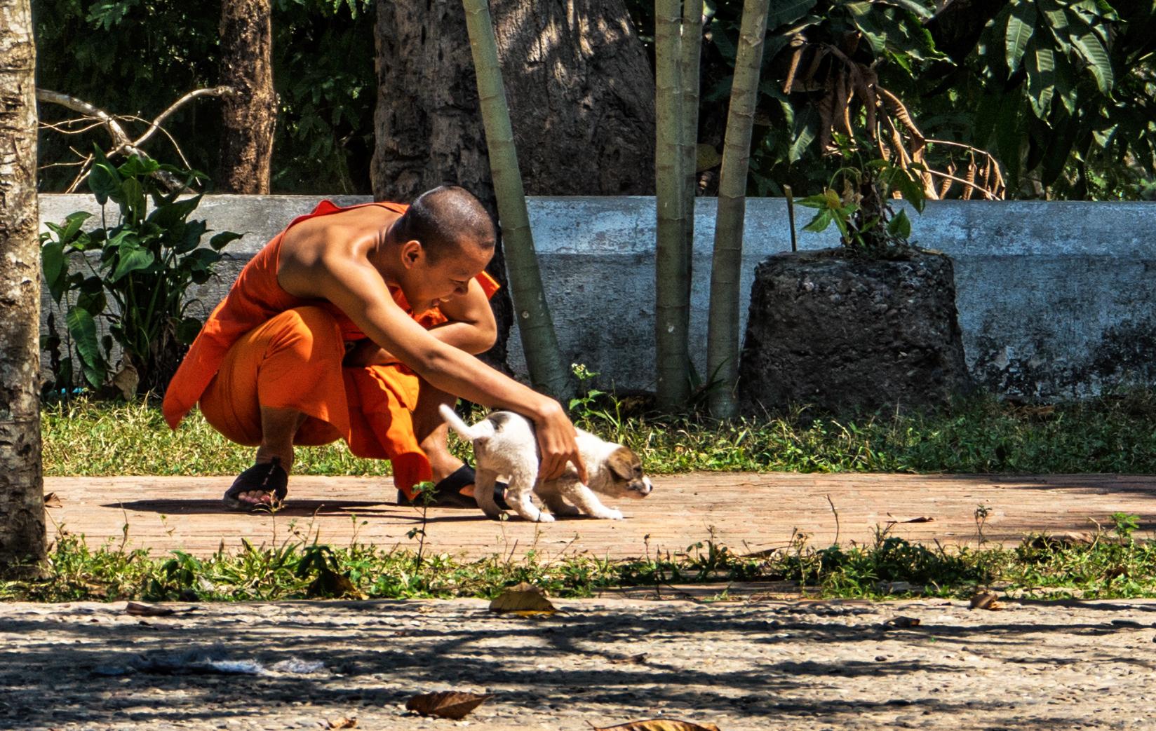 Laos – Gioco al Tempio